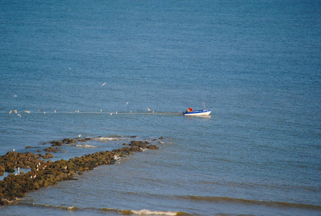 Fischer an der belgischen Küste