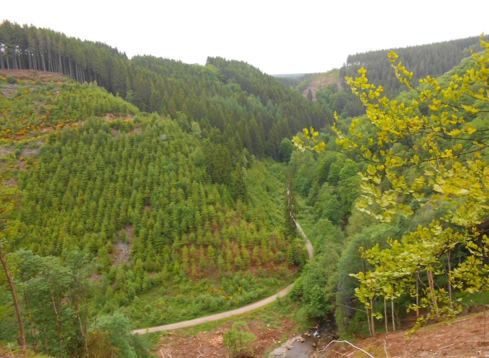 Weitblick in die Ardennen