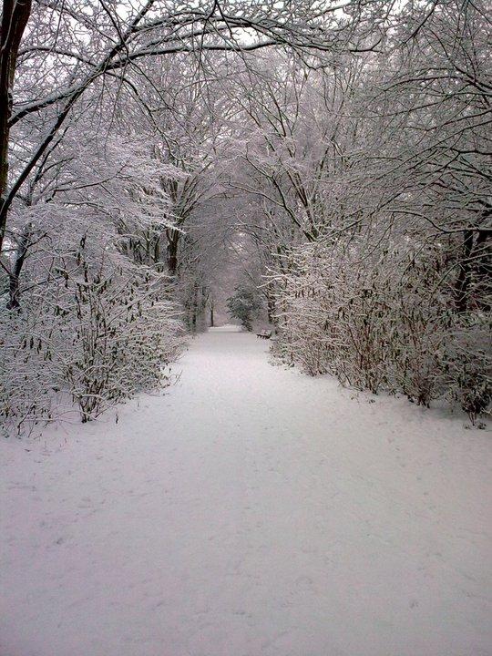 Winterlandschaften genießen
